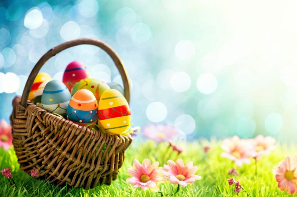 Egg-basket (2)