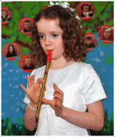 tin-whistle
